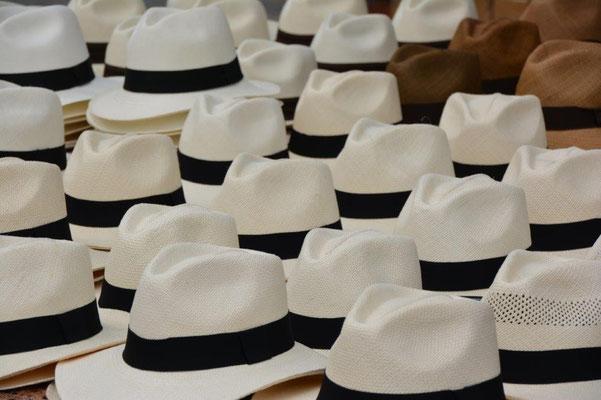 Panama Hüte, die eigentlich in Ecuador hergestellt werden