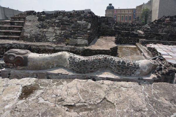 Temple Major