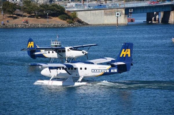 Mehr Wasserflugzeuge als Boote im Hafen von Victoria