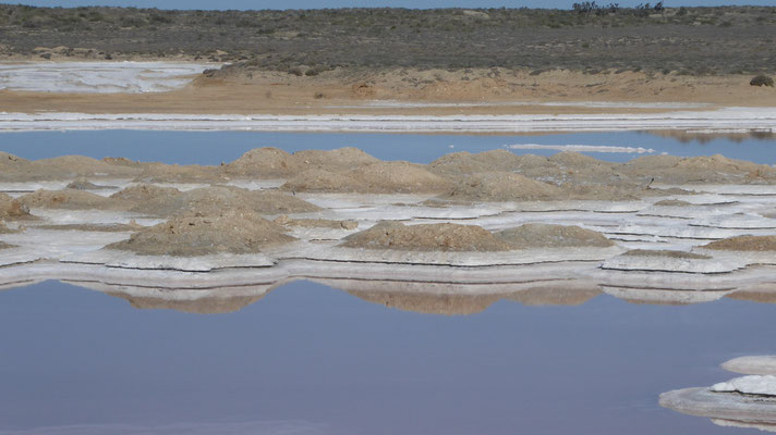 Salt lake on the way to Ojo Liebre