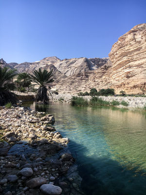 Wadi Suneik