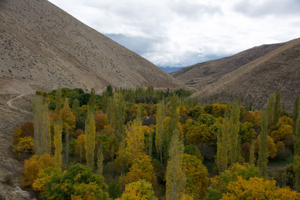 Auf dem Weg nach Masuleh