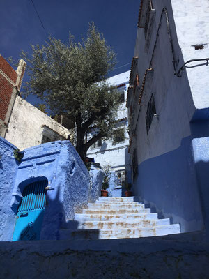 all is blue in Chefchouen