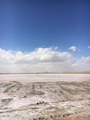 Salzwüste / salt flat