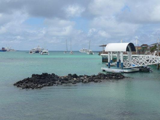 Hafen Puerto Ayora