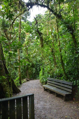 Nationalpark Monteverde