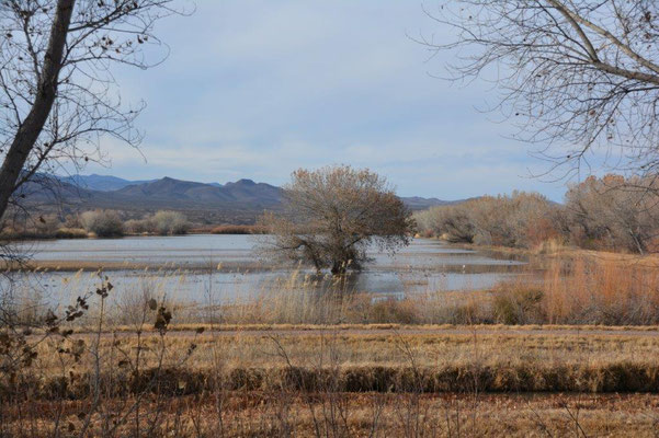 Apache Wildlife Refuge