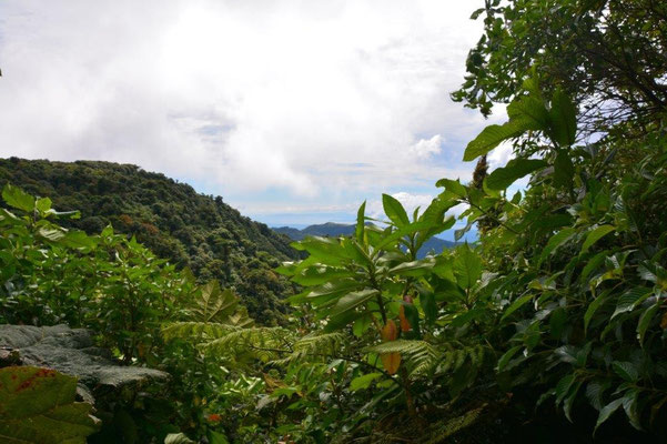 Wasserscheide Karibik / Pazifik