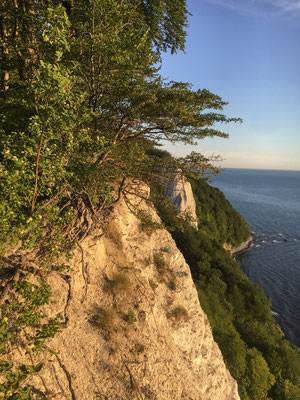The famous chalk cliffs of Rügen