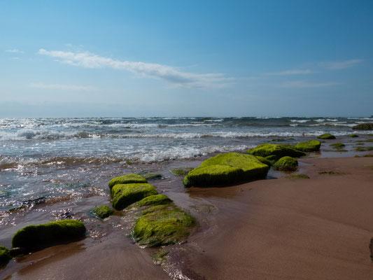 Prince Edward Island, Strandspaziergang