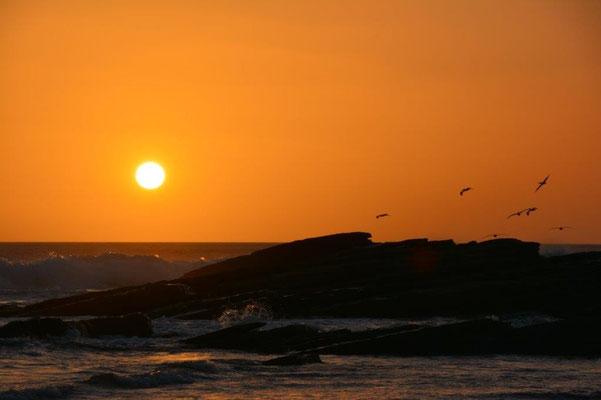 Sonnenuntergang an der Playa Popoyo
