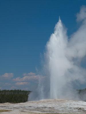 Yellowstone Nationalpark - Old Faithful