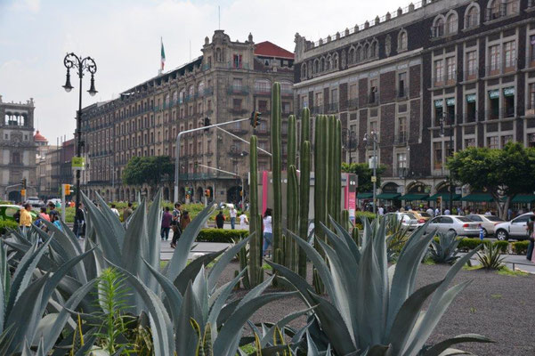Zocalo - Main Plaza