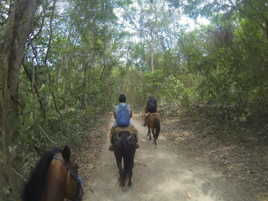 Horseback riding to the beach