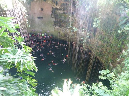 So sieht eine Cenote aus die in jedem Reiseführer steht