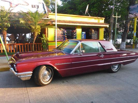 seen in Catemaco, not in Cuba