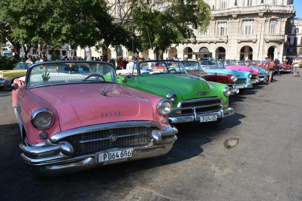 Havanna, ein einzigartiges Automuseum