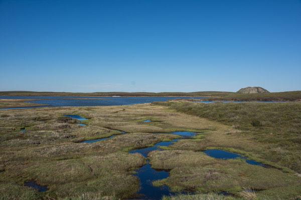 Blick auf die Pingo Hügel in Tuktoyaktuk