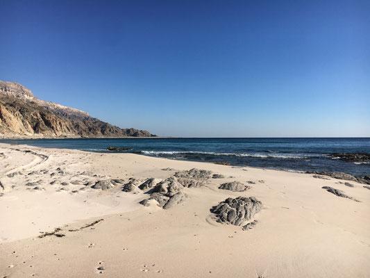 Dolphine beach
