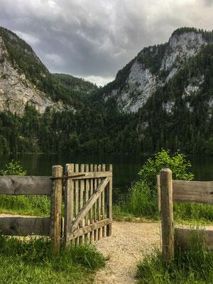 Am Gleinkersee in Oberösterreich