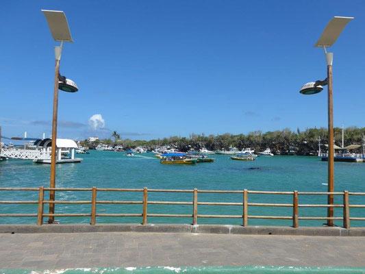 Puerto Ayora at Santa Cruz