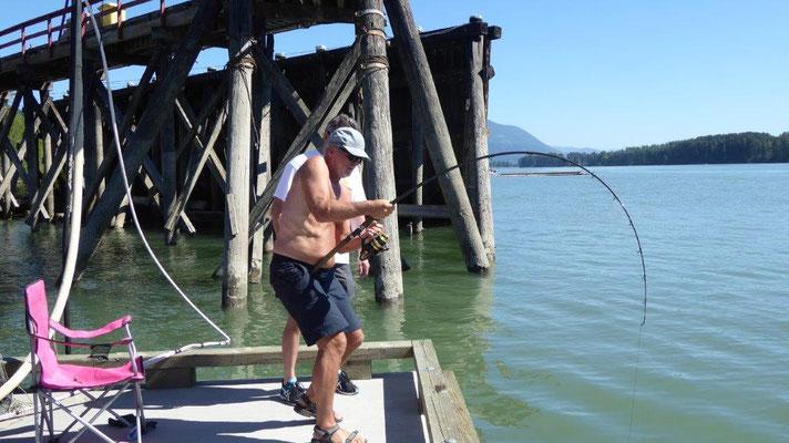 Stör fischen mit Harry