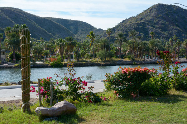 Campground in Mulege