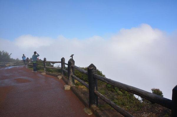 Volcano Poas. Zero view.