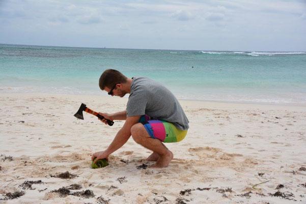 Wie knacke ich eine Kokosnuss