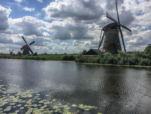 Windmühlen in Kinderdijk