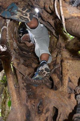Syk Walk mit Klettereinlage