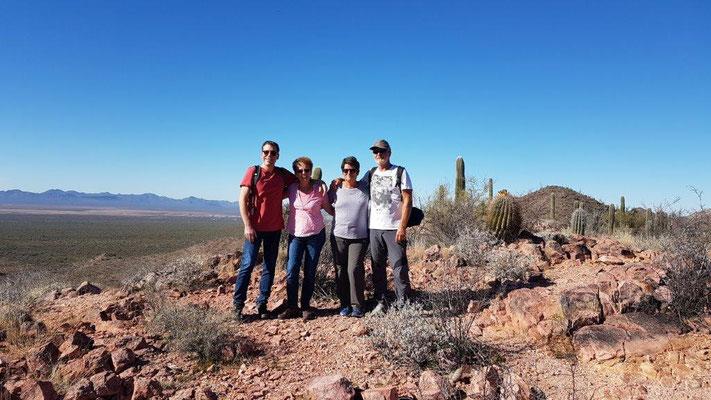 Saguaro NP in Tucson/Arizona
