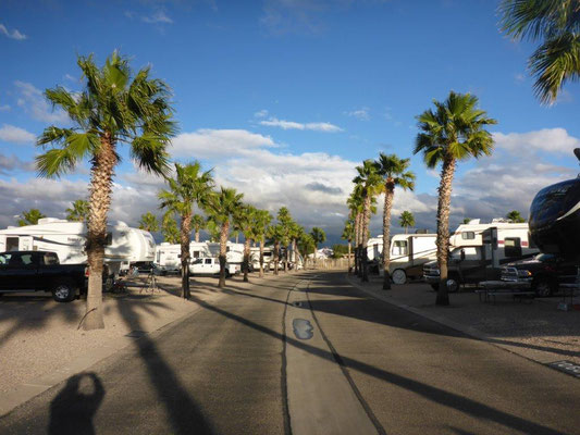 RV Park 55+ with 1100 sites
