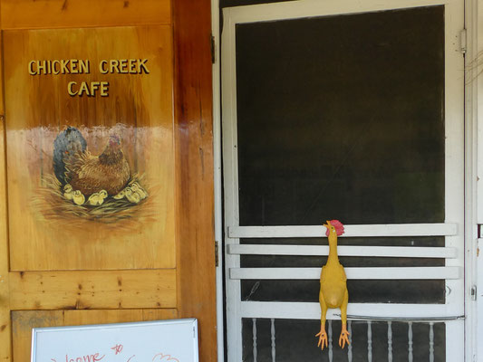 in Chicken