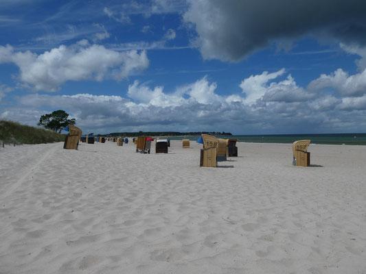 Sehlendorfer Strand