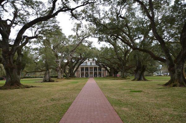 Oak Alley Plantage - Blick auf das Haupthaus