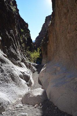 Big Bend Ranch Statepark - Canyon hike