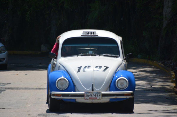 Old style VW beetle as taxi