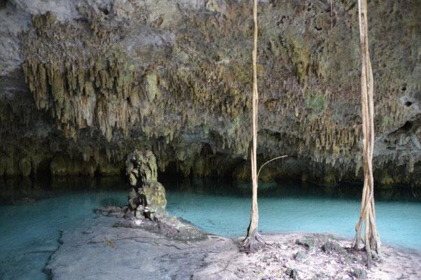 Schwimmen und schnorcheln in einer unterirdischen Cenote