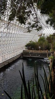 Biosphere 2 - künstliches Meer