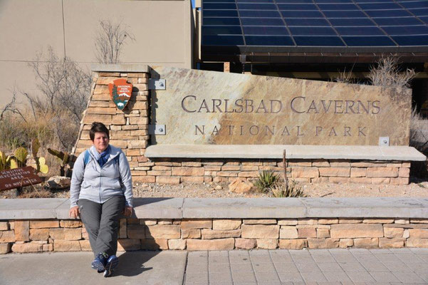 Carlsberg Caverns