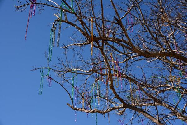 Pensacola - Mardi Gras necklesses