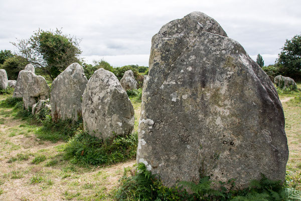 Hinkelsteine bei Carnac