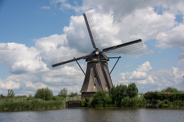 Windmühlen in Kinderdijk