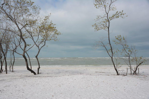 Fort de Soto North Beach