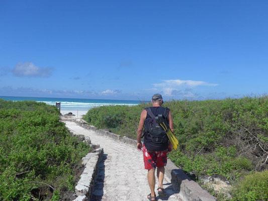 auf dem Weg zur Tortuga Bay