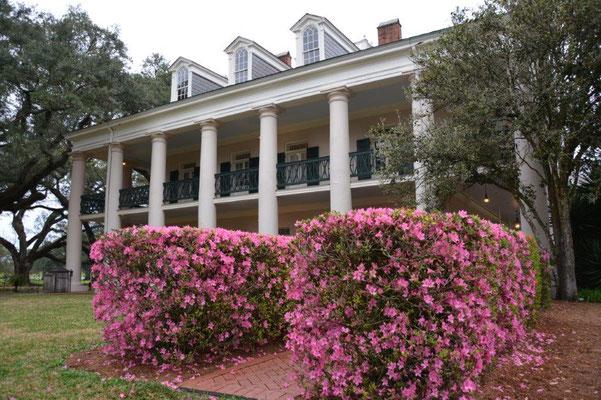 Oak Alley Plantage - Haupthaus von der Seite
