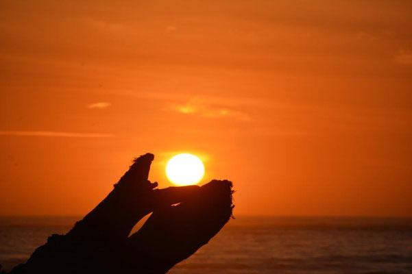 Spielerei mit dem Foto zum Sonnenuntergang