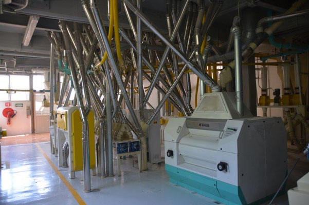 Visit of the flour mill in Atotonilco