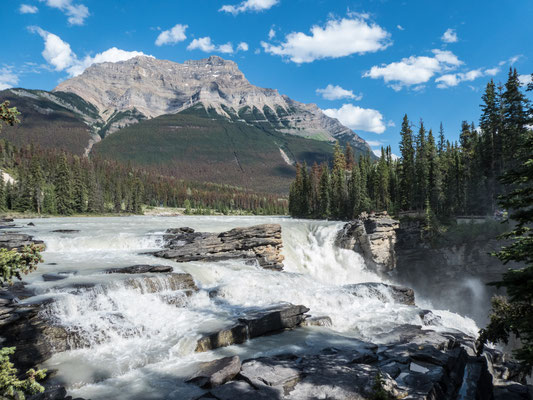 Icefield Parkway - Athabasca Falls